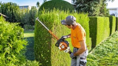 KDW Personal I Grünraumpflege I Heckenschnitt I Baumschnitt I Rasenmähen